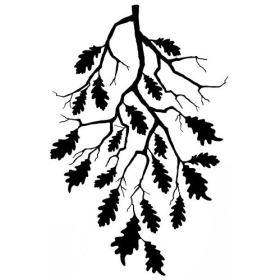 Oak Leaf Branch (468)