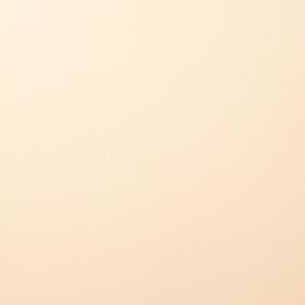 Florence Cardstock 216 gr 12x12'' - Raffia