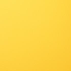 Florence Cardstock 216 gr 12x12'' - 1 Vel Lemon Yellow