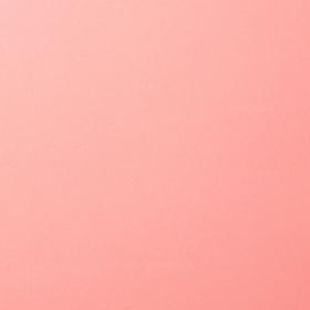"Florence Cardstock 216g 12x12"" - 1 Vel Rose"