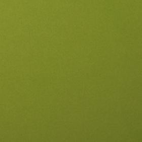 "Smooth Cardstock 216g 12x12"" - 1 Vel Olive"