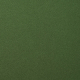 "Smooth Cardstock 216g 12x12"" - 1 Vel Pine"