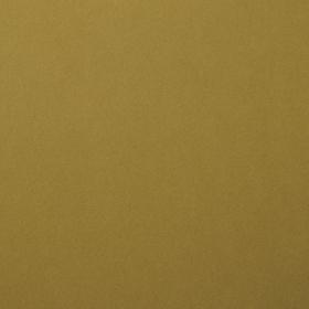 """Smooth Cardstock 216g 12x12"""" - 1 Vel Acacia"""