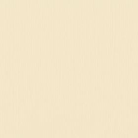 "Texture Cardstock 216g 12x12"" - 1 Vel Raffia"