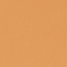 "Texture Cardstock 216g 12x12"" - 1 Vel Apricot"