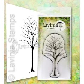 LAV649 - Birch