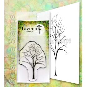 LAV652 - Elm