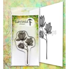 LAV653 - Lilium