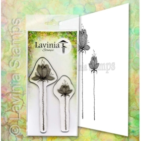 LAV654 - Lilium Set