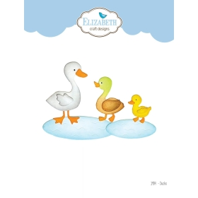 1904 - Ducks